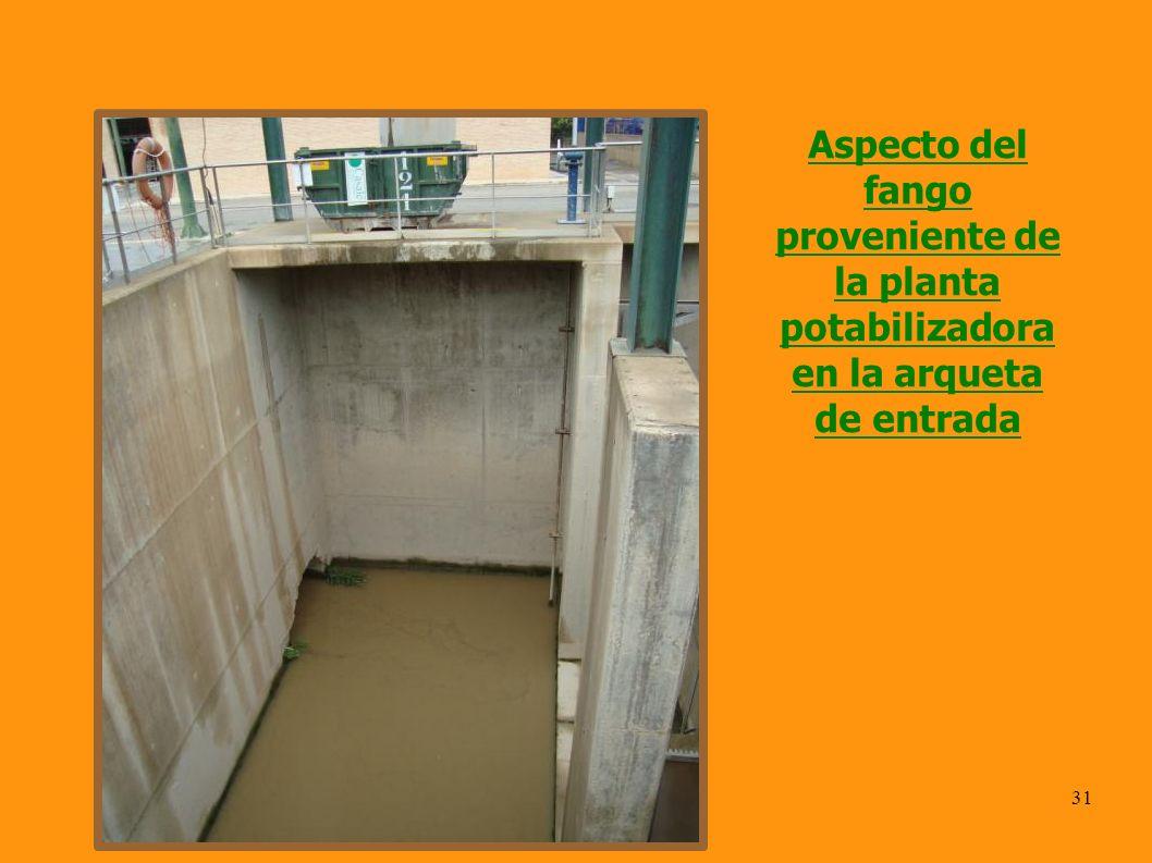 Aspecto del fango proveniente de la planta potabilizadora en la arqueta de entrada