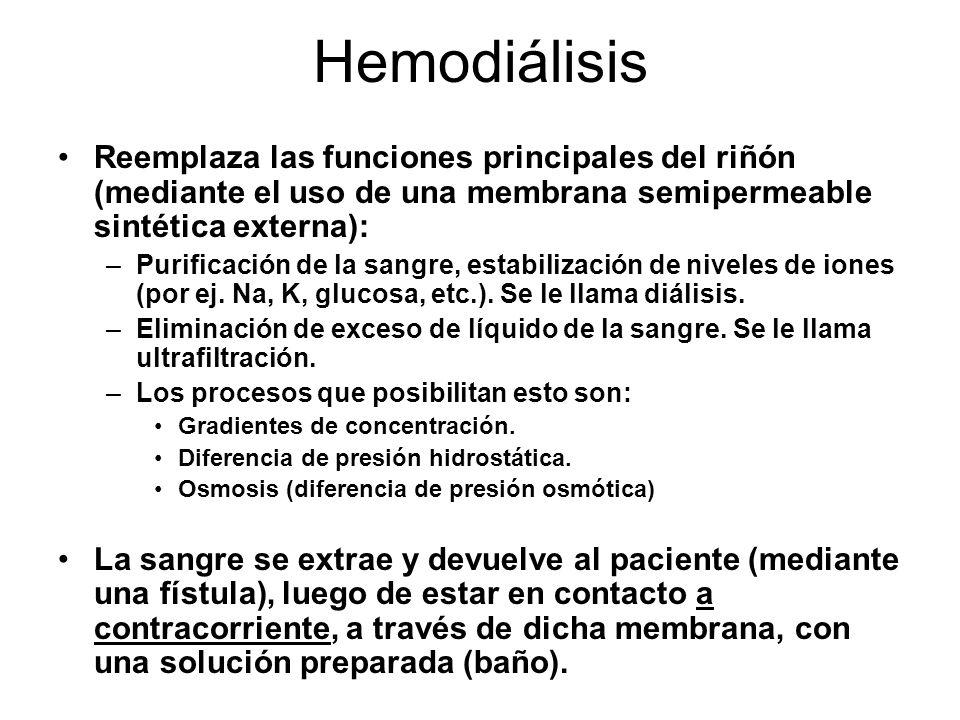 Hemodiálisis Reemplaza las funciones principales del riñón (mediante el uso de una membrana semipermeable sintética externa):