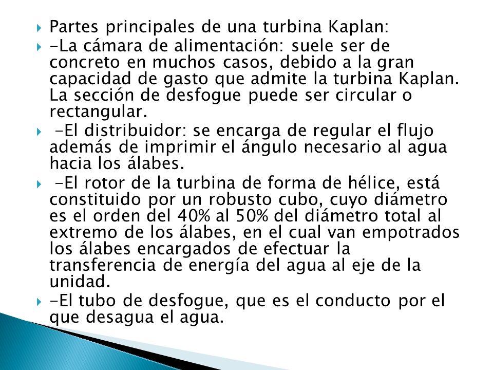 Partes principales de una turbina Kaplan: