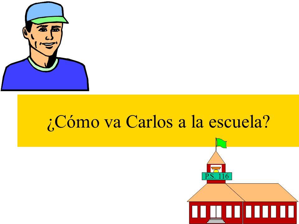 ¿Cómo va Carlos a la escuela