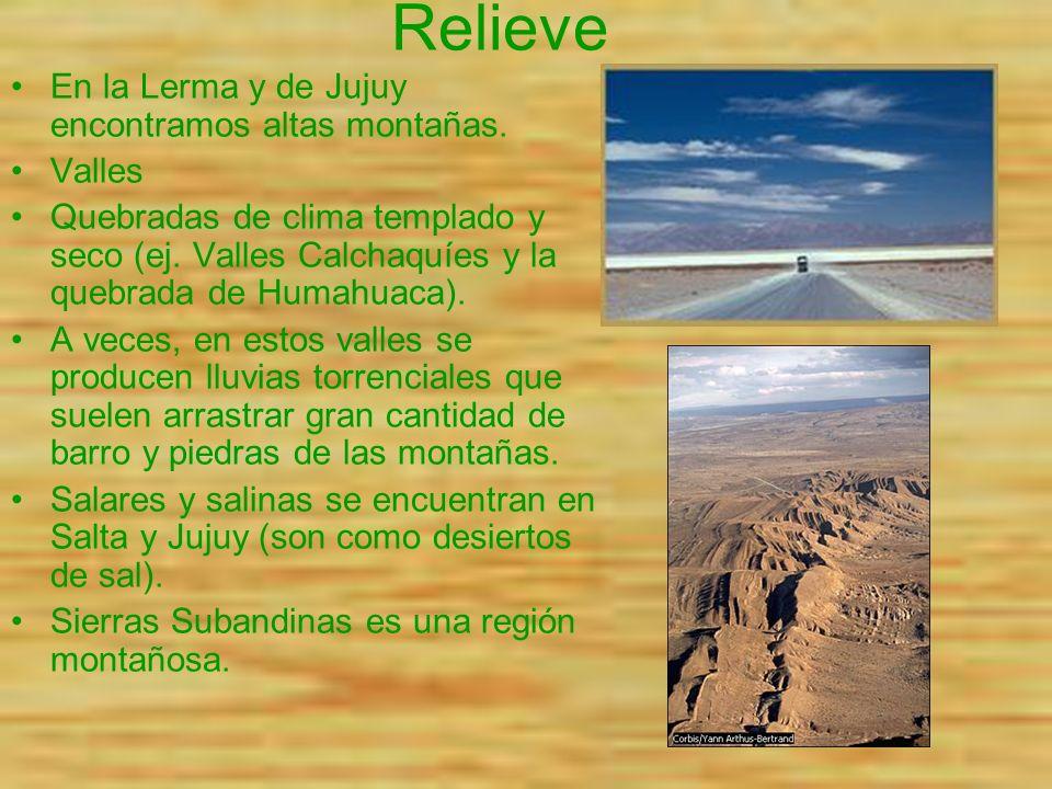 Relieve En la Lerma y de Jujuy encontramos altas montañas. Valles