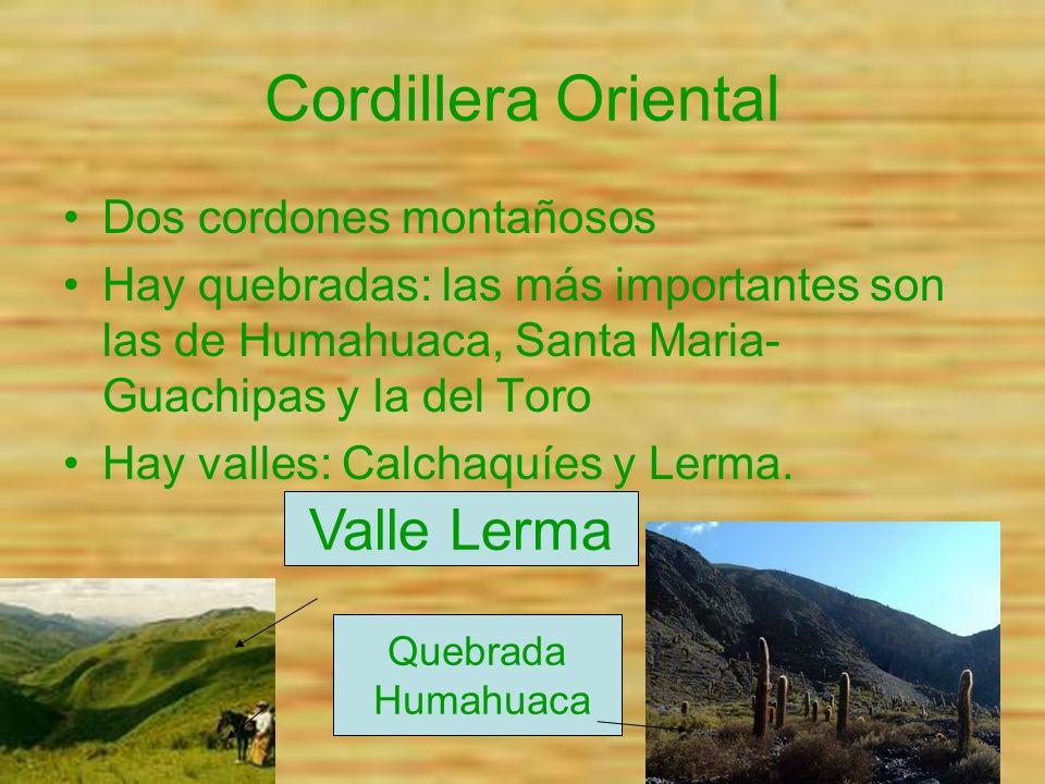 Cordillera Oriental Valle Lerma Dos cordones montañosos