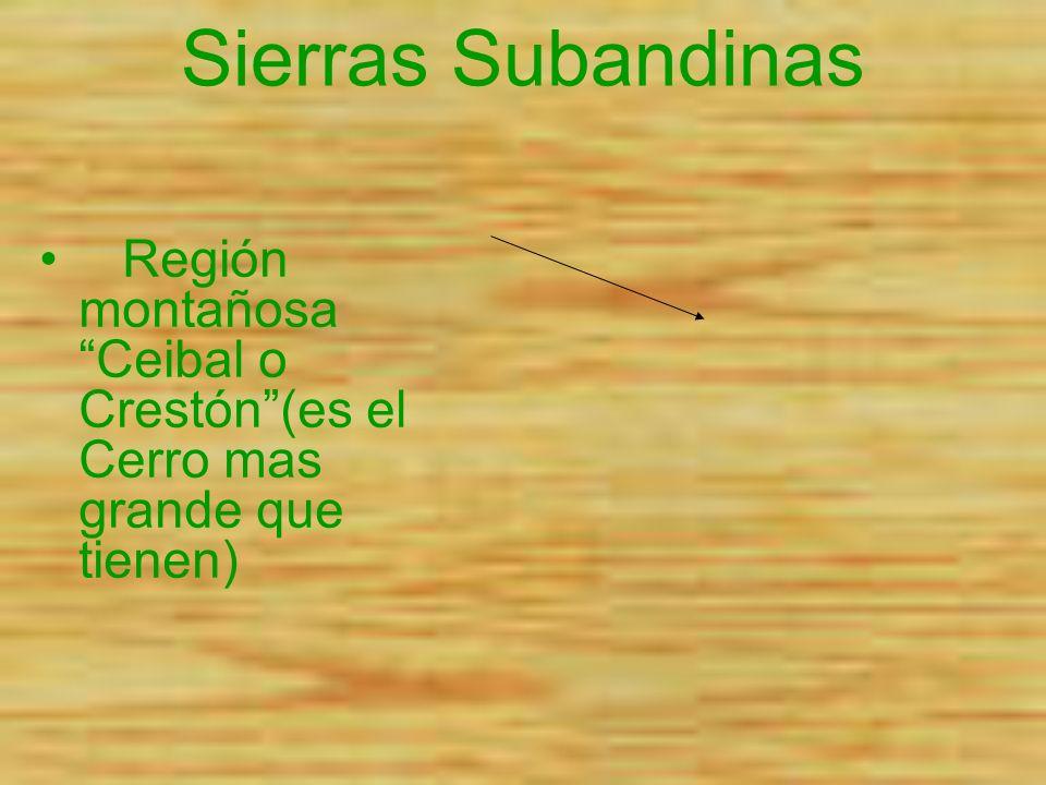 Sierras Subandinas.