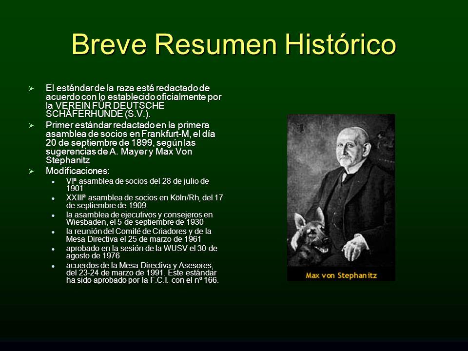 Breve Resumen Histórico