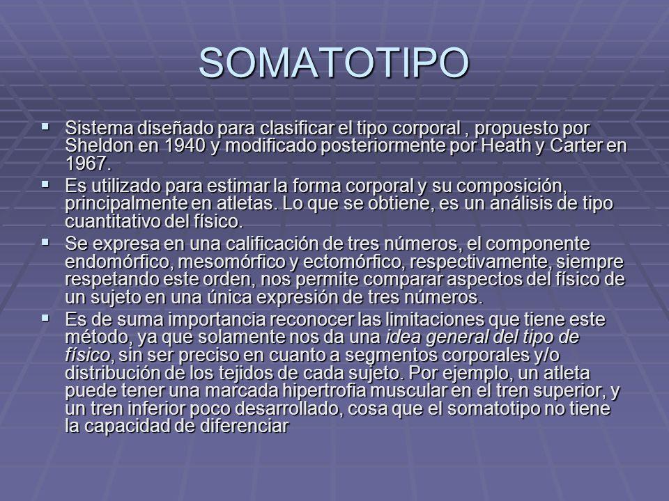 SOMATOTIPO Sistema diseñado para clasificar el tipo corporal , propuesto por Sheldon en 1940 y modificado posteriormente por Heath y Carter en 1967.