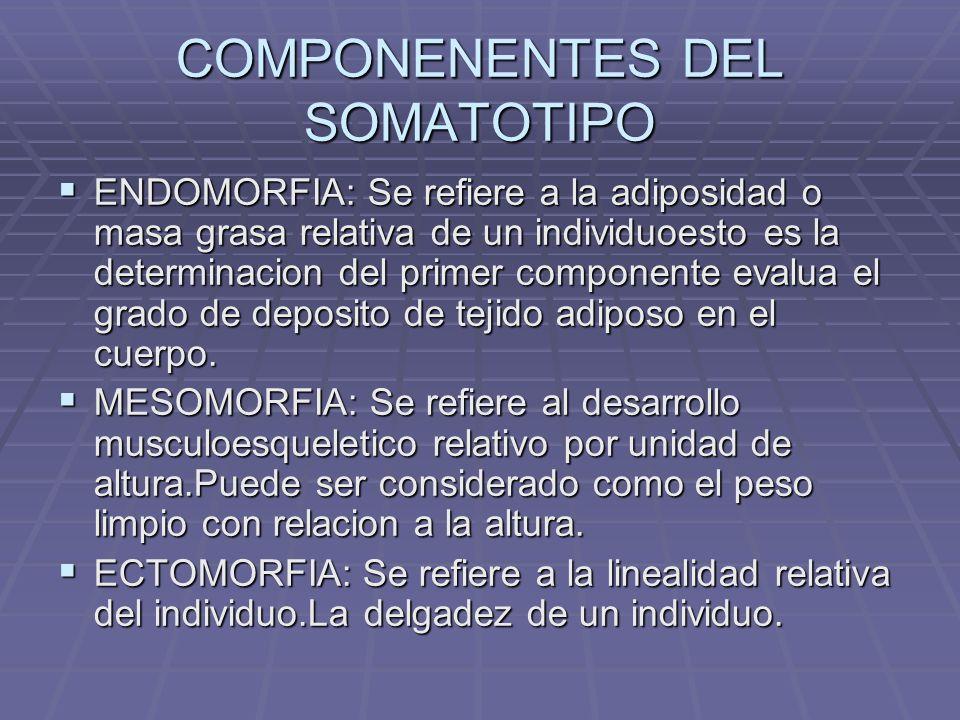 COMPONENENTES DEL SOMATOTIPO