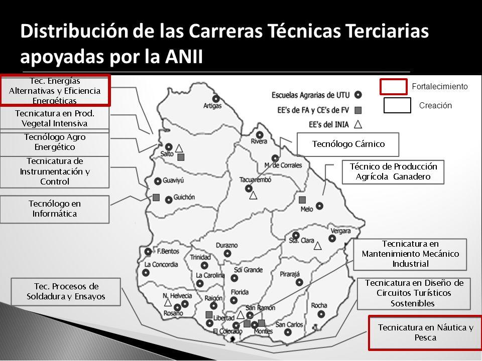 Distribución de las Carreras Técnicas Terciarias apoyadas por la ANII