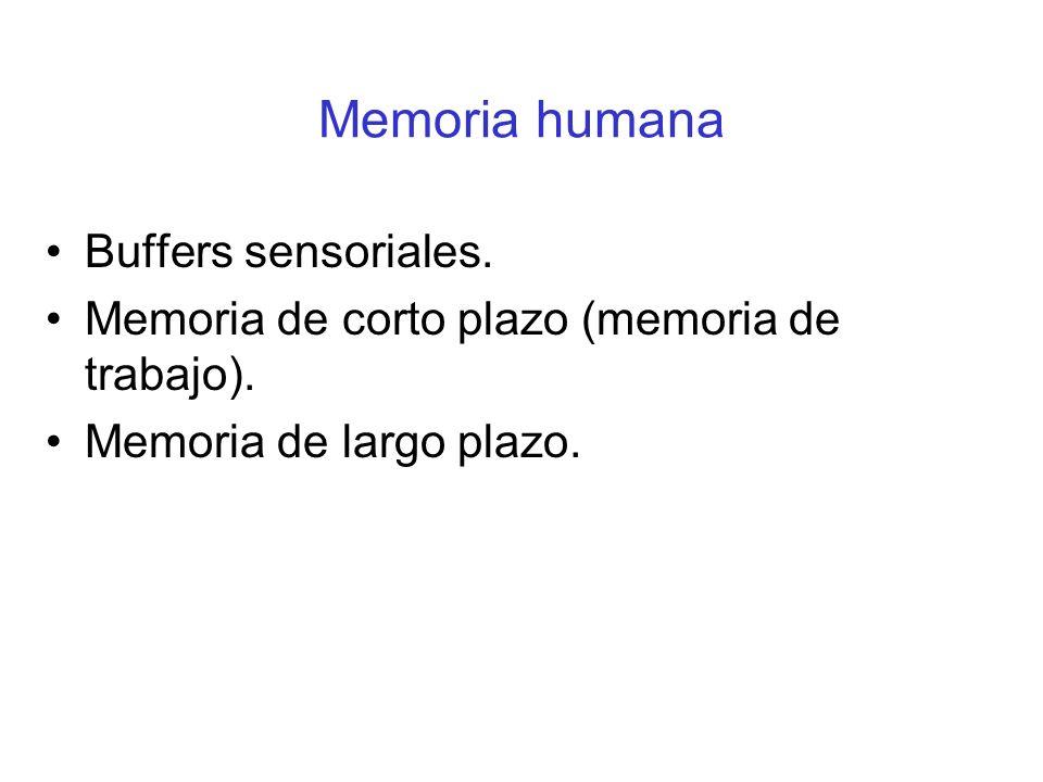 Memoria humana Buffers sensoriales.