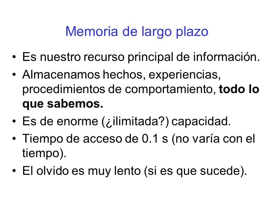 Memoria de largo plazo Es nuestro recurso principal de información.