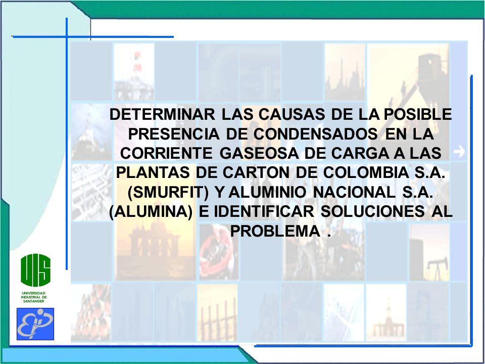 DETERMINAR LAS CAUSAS DE LA POSIBLE PRESENCIA DE CONDENSADOS EN LA CORRIENTE GASEOSA DE CARGA A LAS PLANTAS DE CARTON DE COLOMBIA S.A.