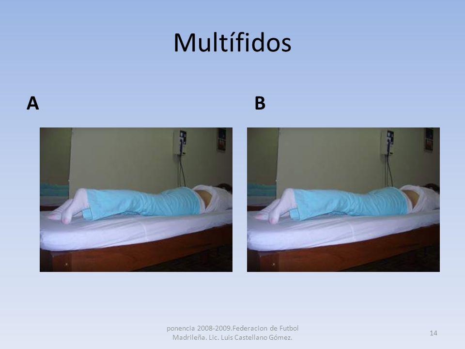 Multífidos A B.