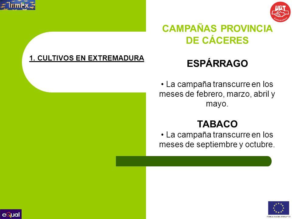 CAMPAÑAS PROVINCIA DE CÁCERES