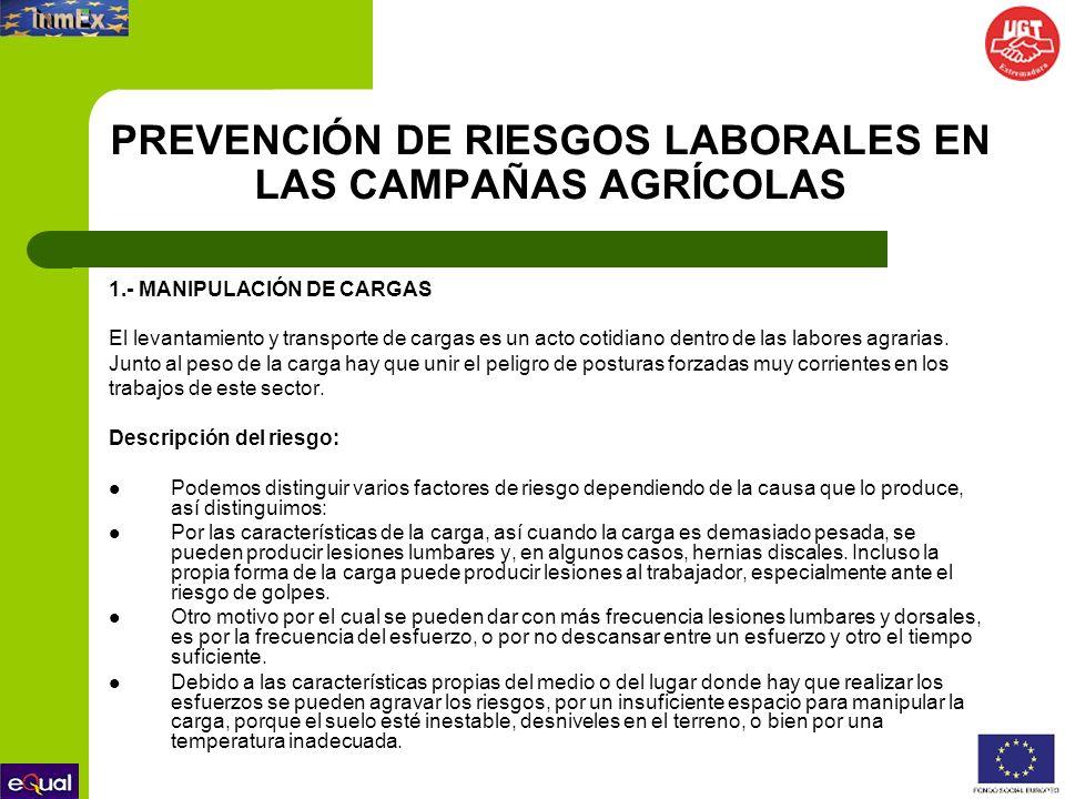 PREVENCIÓN DE RIESGOS LABORALES EN LAS CAMPAÑAS AGRÍCOLAS