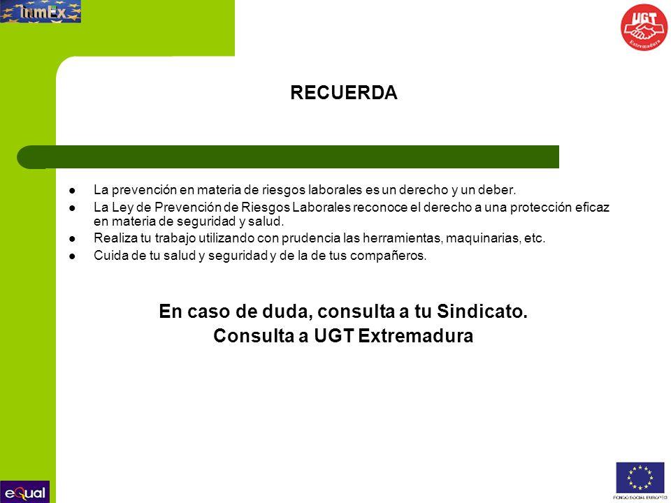 En caso de duda, consulta a tu Sindicato. Consulta a UGT Extremadura