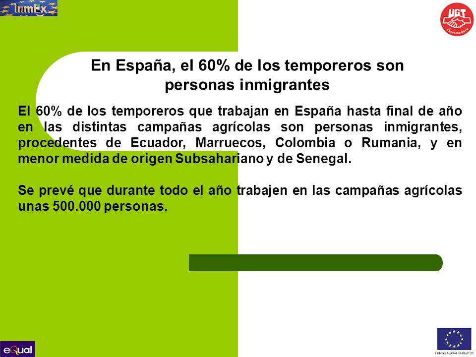 En España, el 60% de los temporeros son personas inmigrantes