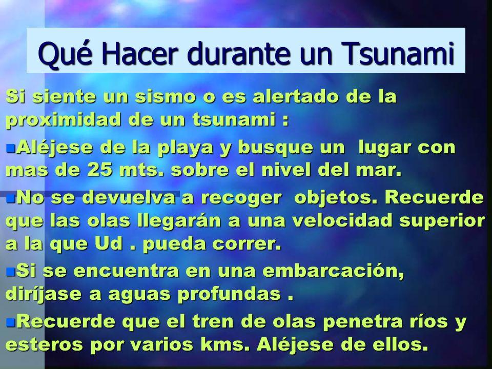 Qué Hacer durante un Tsunami