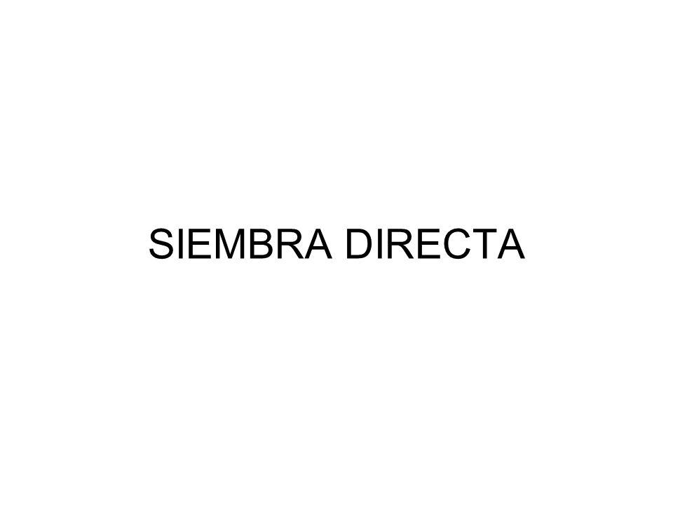 SIEMBRA DIRECTA