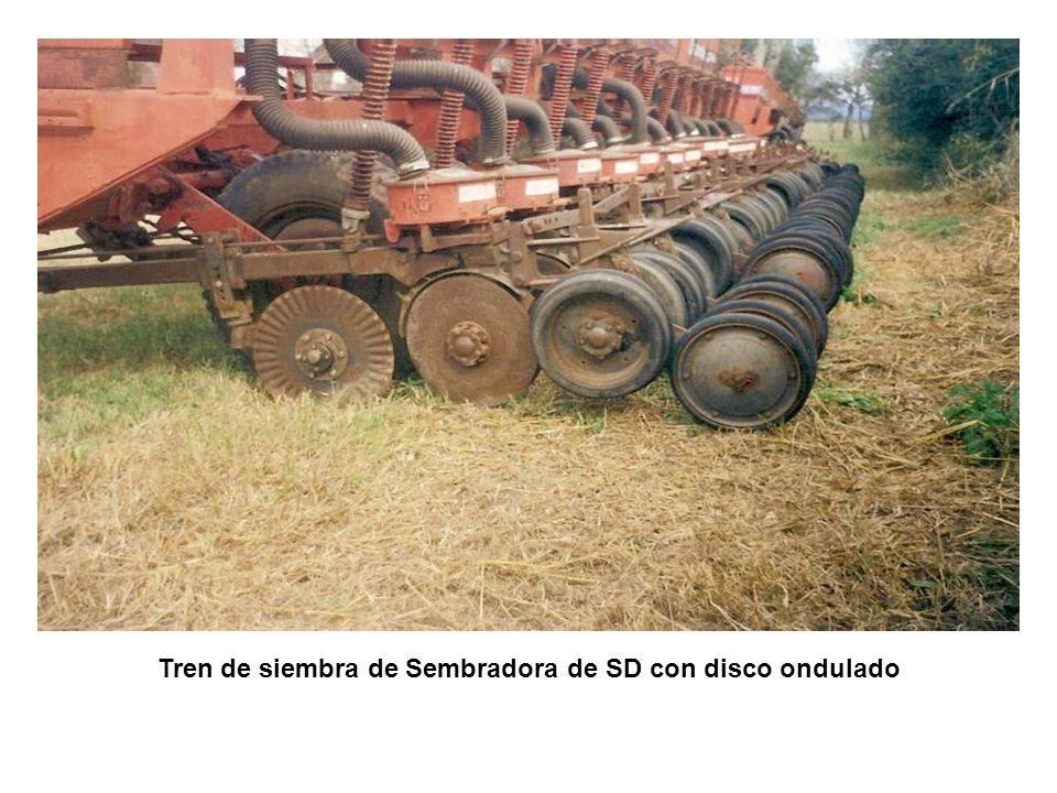 Tren de siembra de Sembradora de SD con disco ondulado