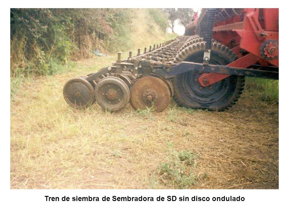 Tren de siembra de Sembradora de SD sin disco ondulado
