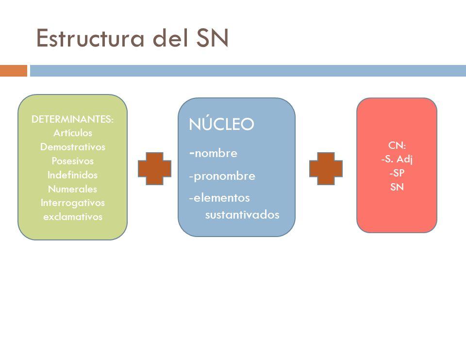 Estructura del SN NÚCLEO -nombre -pronombre -elementos sustantivados