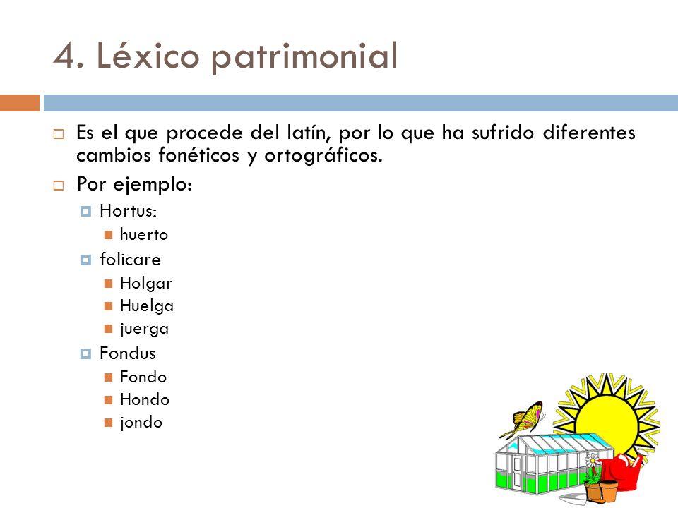 4. Léxico patrimonial Es el que procede del latín, por lo que ha sufrido diferentes cambios fonéticos y ortográficos.