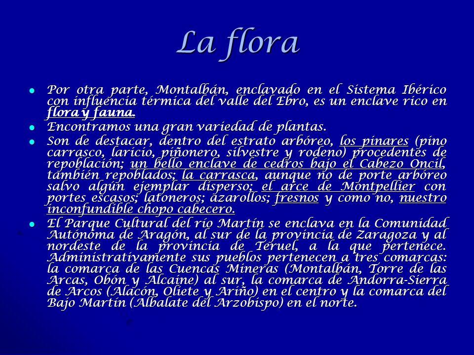 La flora Por otra parte, Montalbán, enclavado en el Sistema Ibérico con influencia térmica del valle del Ebro, es un enclave rico en flora y fauna.