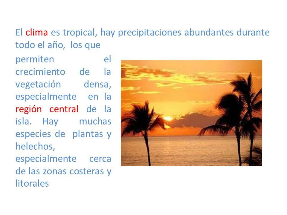 El clima es tropical, hay precipitaciones abundantes durante todo el año, los que
