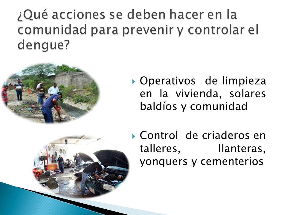 ¿Qué acciones se deben hacer en la comunidad para prevenir y controlar el dengue