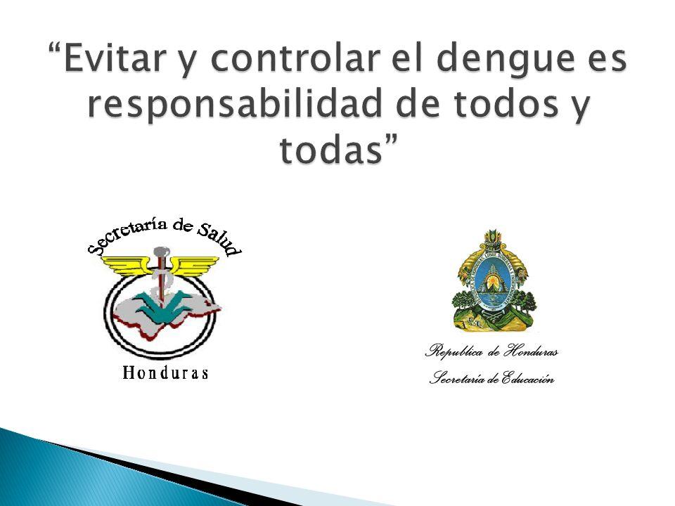 Evitar y controlar el dengue es responsabilidad de todos y todas