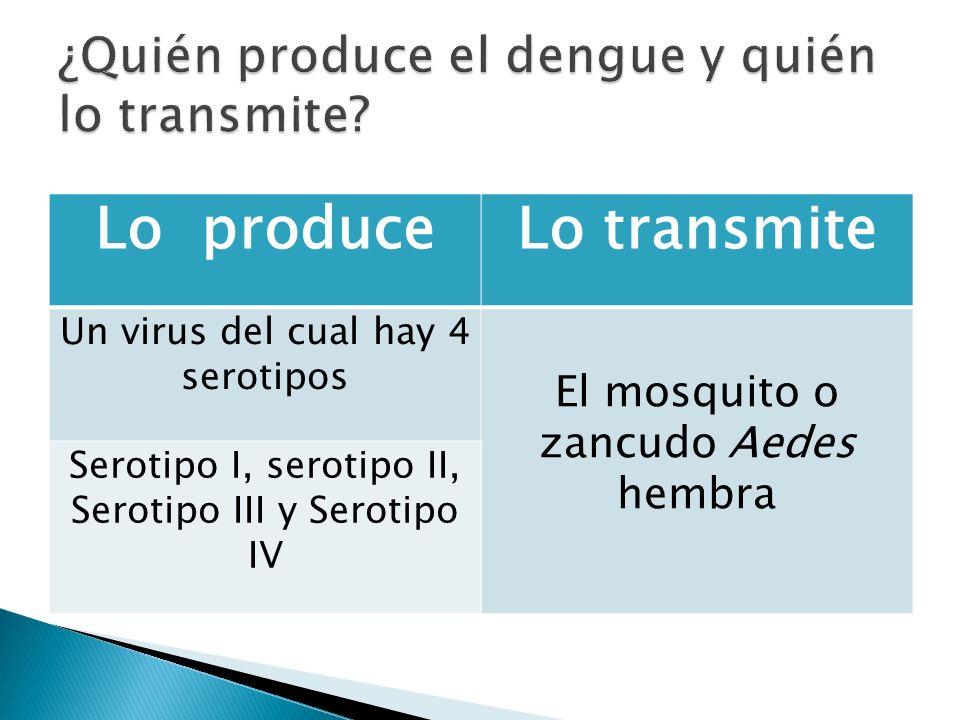 ¿Quién produce el dengue y quién lo transmite