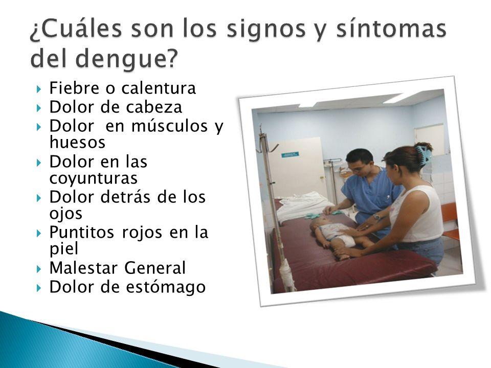 ¿Cuáles son los signos y síntomas del dengue