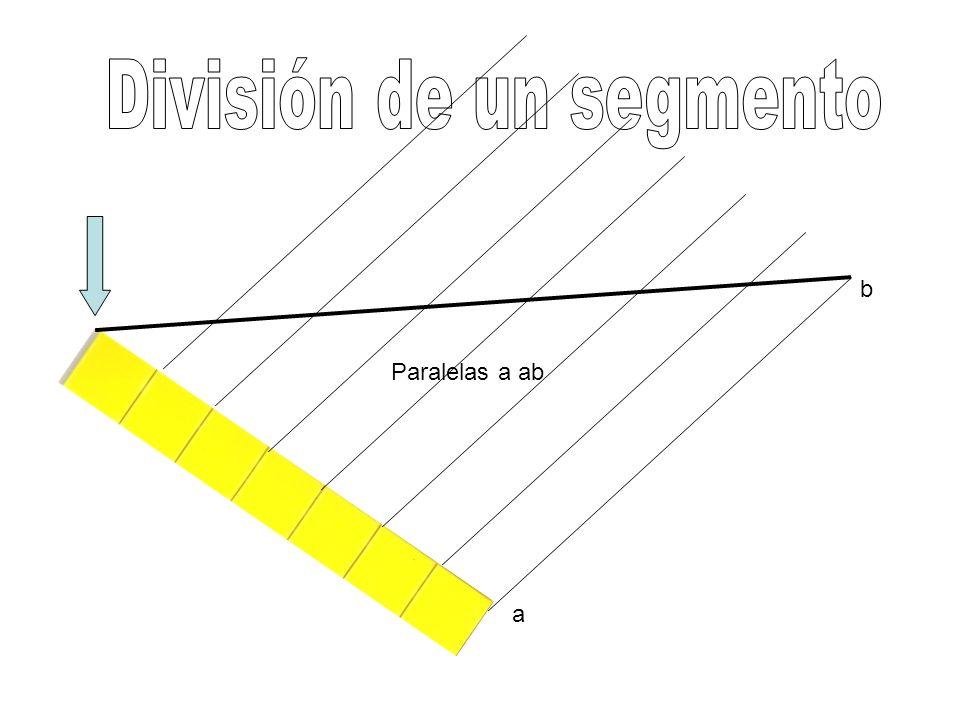 División de un segmento