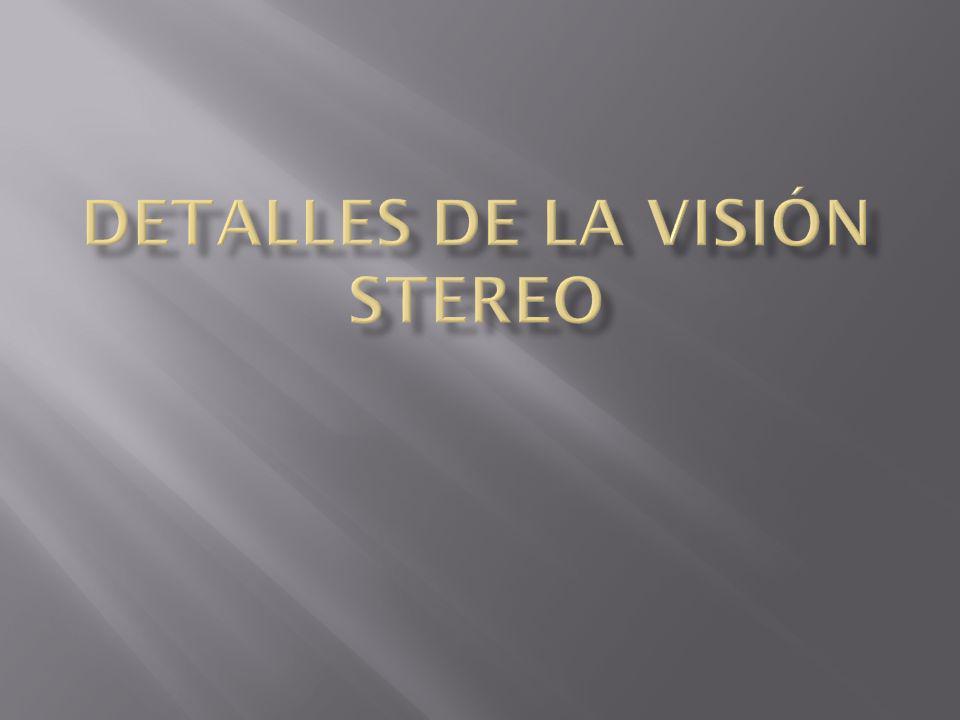 Detalles de la visión stereo