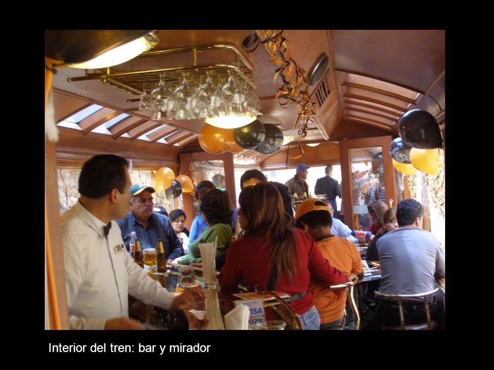 Interior del tren: bar y mirador