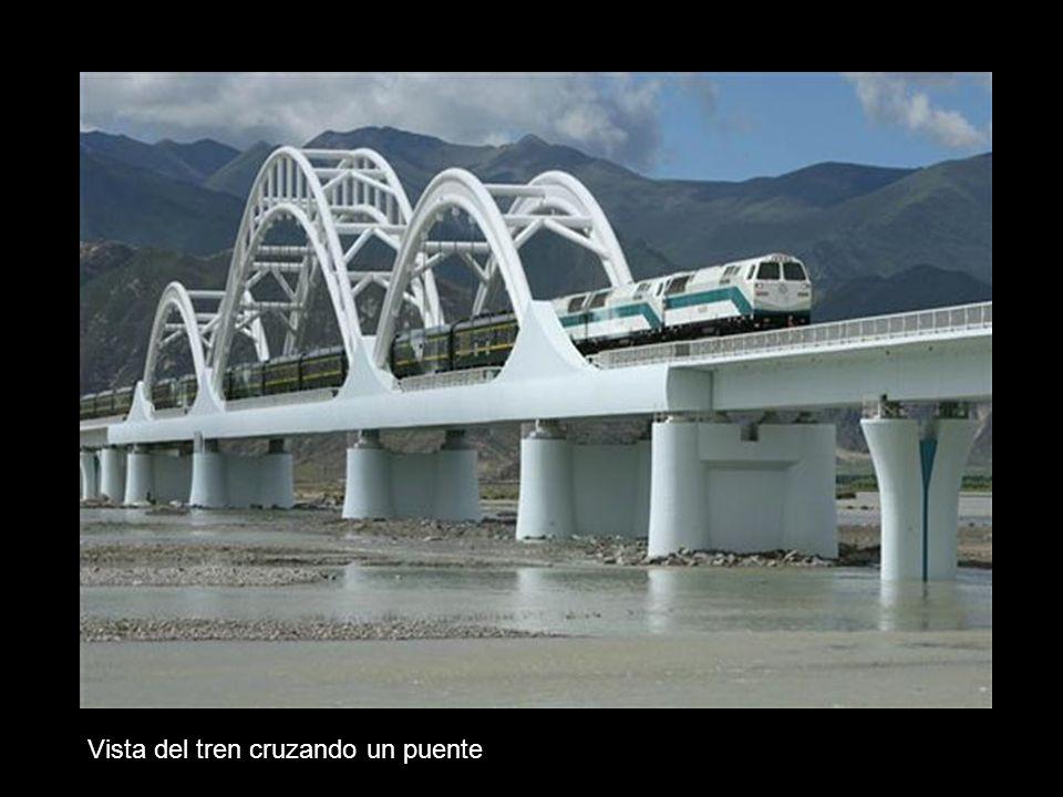 Vista del tren cruzando un puente