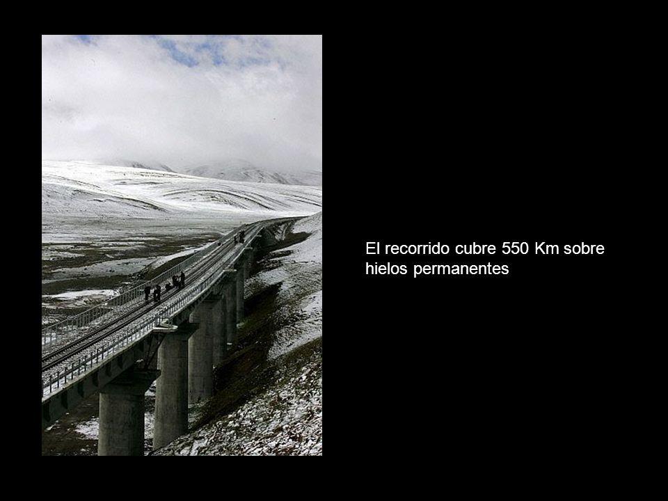 El recorrido cubre 550 Km sobre hielos permanentes