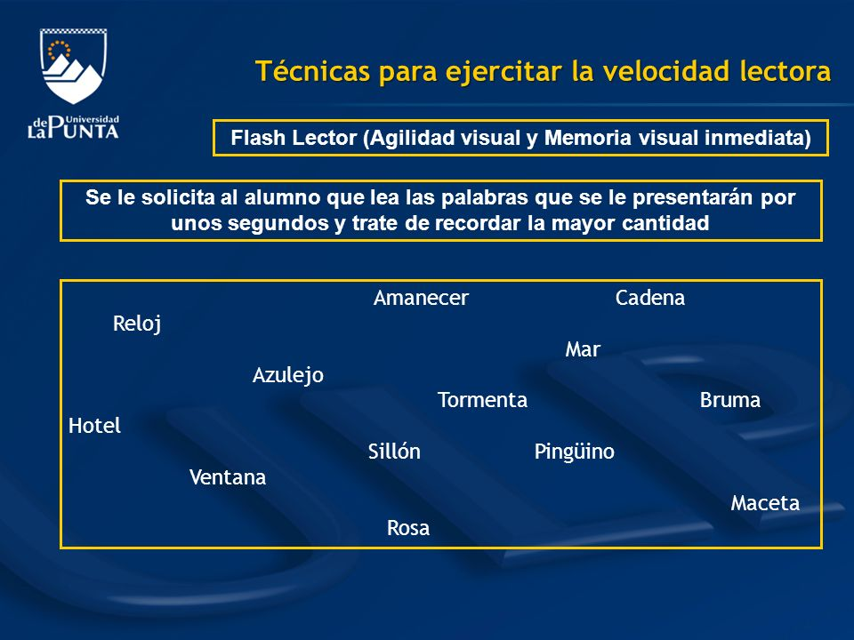 Flash Lector (Agilidad visual y Memoria visual inmediata)