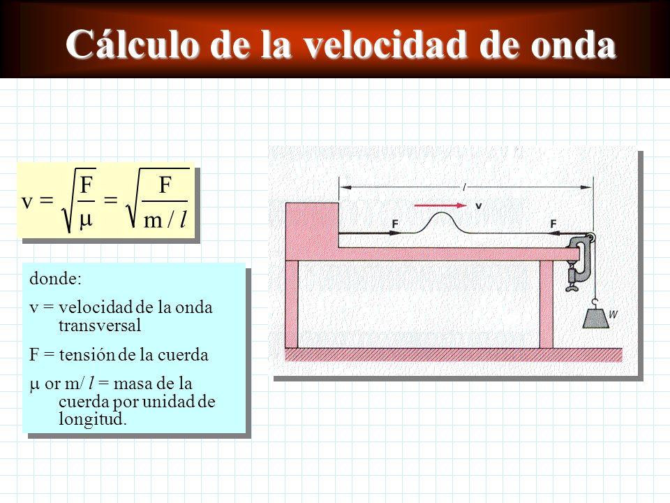 Cálculo de la velocidad de onda