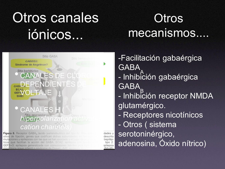 Otros canales iónicos... Otros mecanismos....