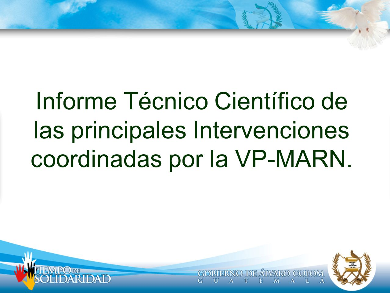 Informe Técnico Científico de las principales Intervenciones coordinadas por la VP-MARN.