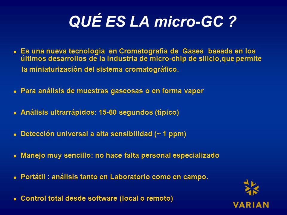 QUÉ ES LA micro-GC
