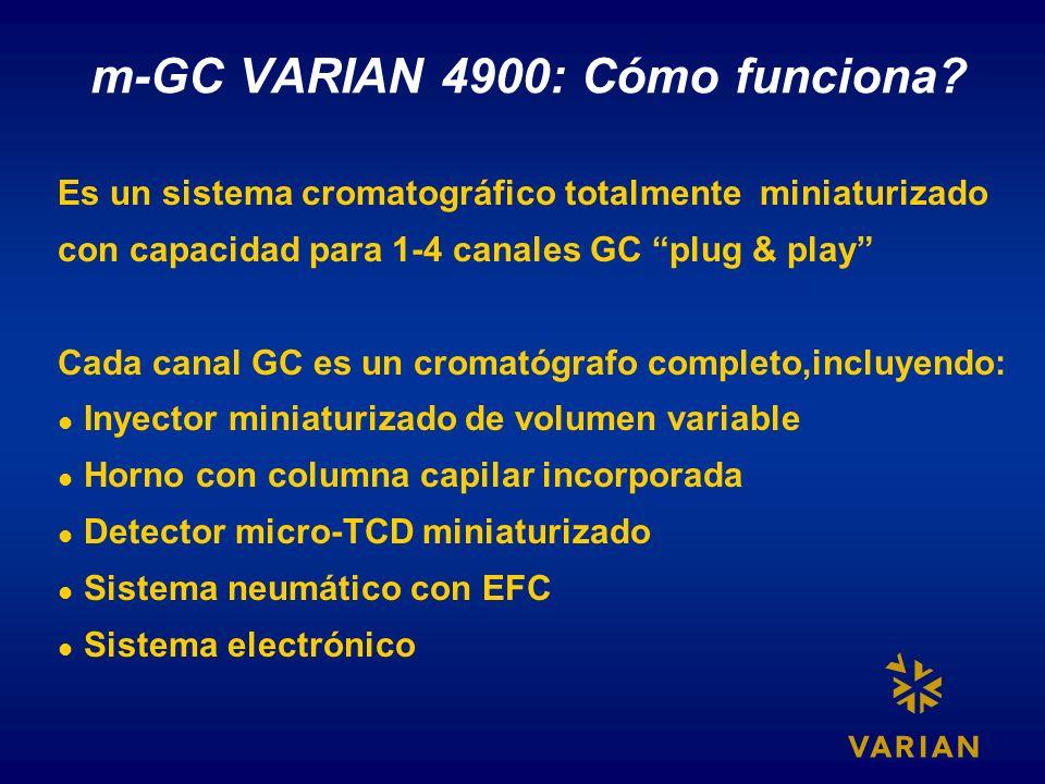 m-GC VARIAN 4900: Cómo funciona