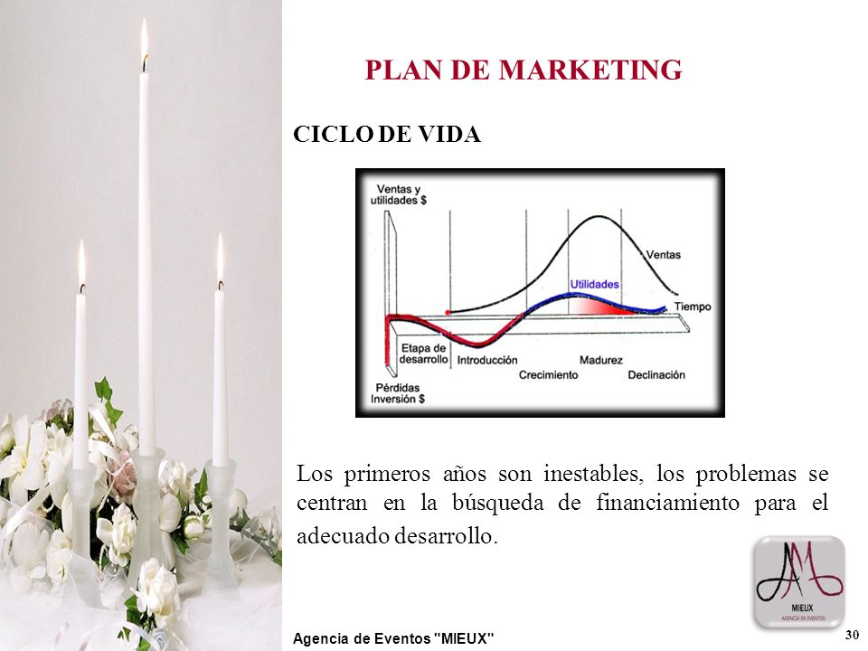 PLAN DE MARKETING CICLO DE VIDA
