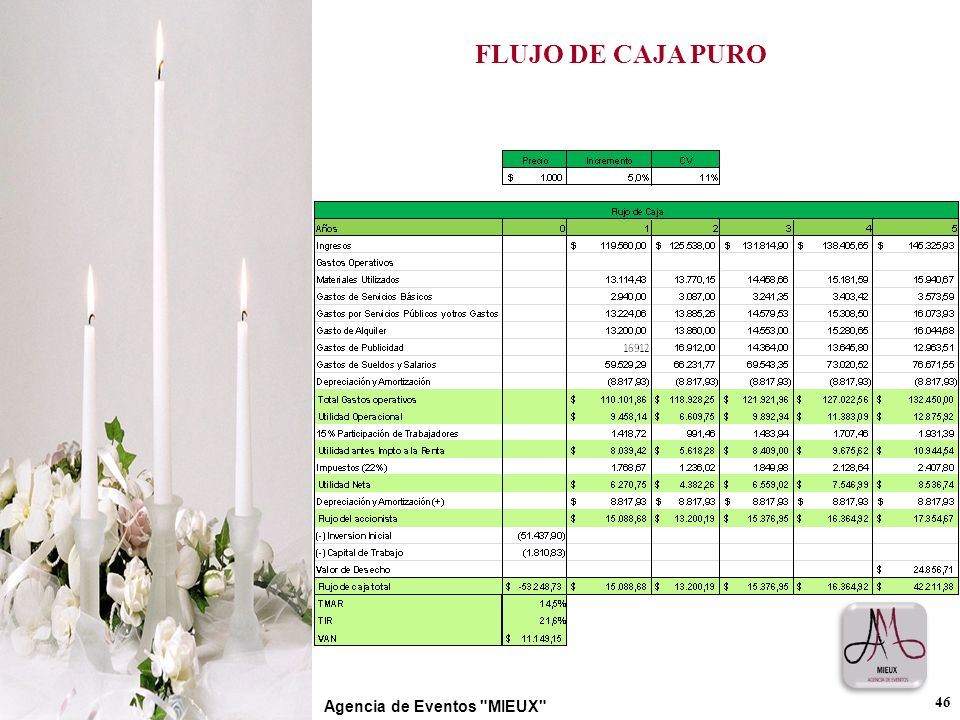 FLUJO DE CAJA PURO Agencia de Eventos MIEUX