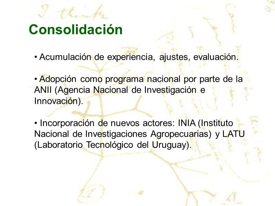 Consolidación Acumulación de experiencia, ajustes, evaluación.