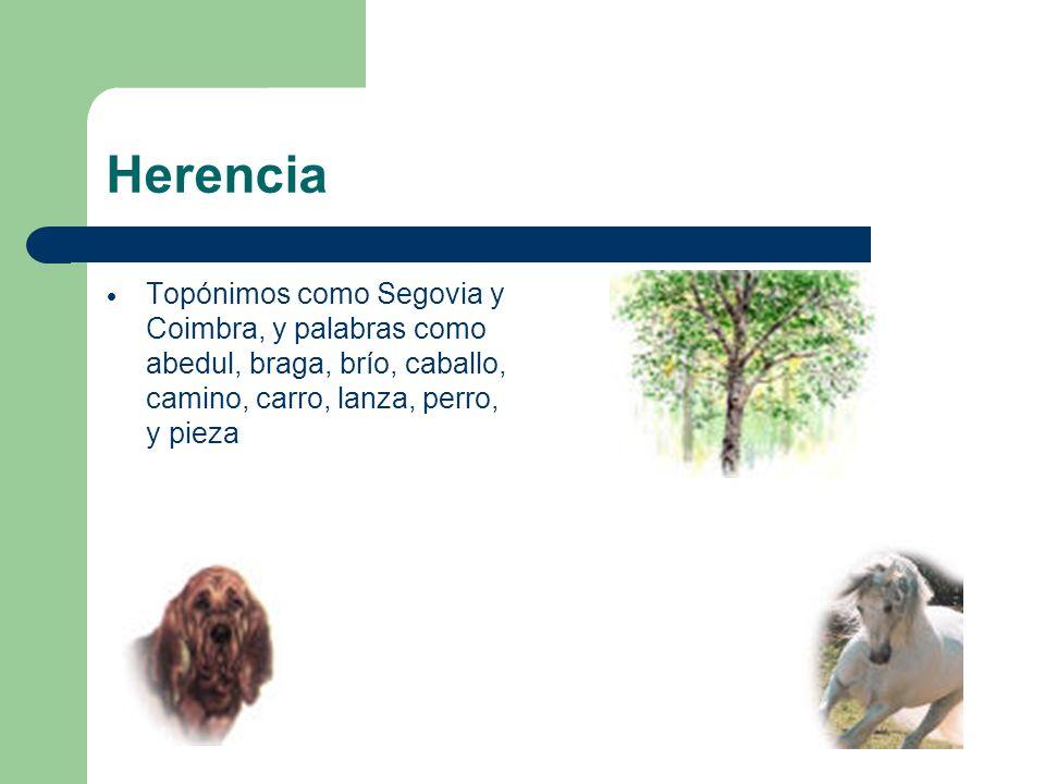 Herencia Topónimos como Segovia y Coimbra, y palabras como abedul, braga, brío, caballo, camino, carro, lanza, perro, y pieza.