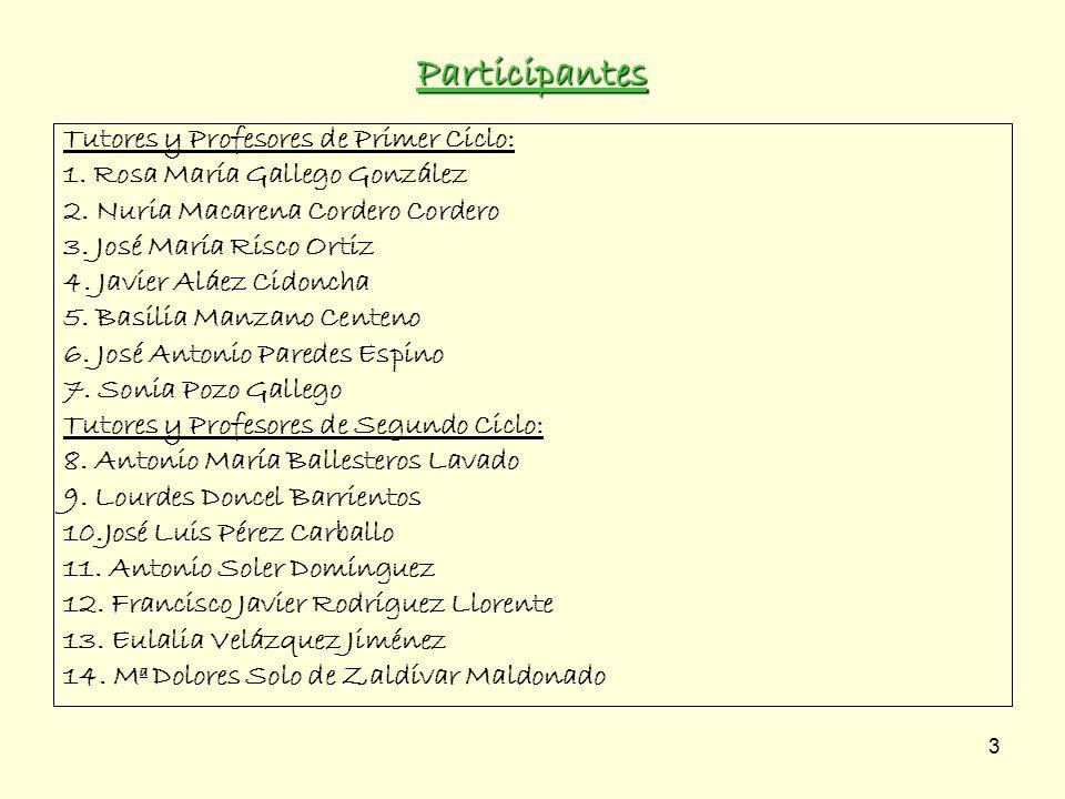 Participantes Tutores y Profesores de Primer Ciclo: