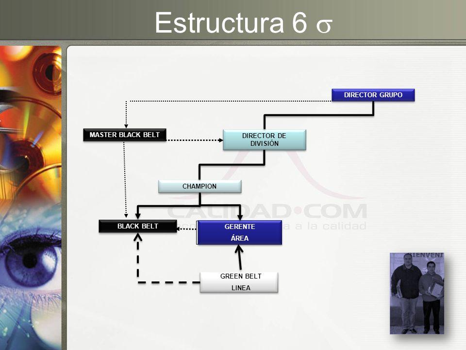 Estructura 6  DIRECTOR GRUPO MASTER BLACK BELT DIRECTOR DE DIVISIÓN