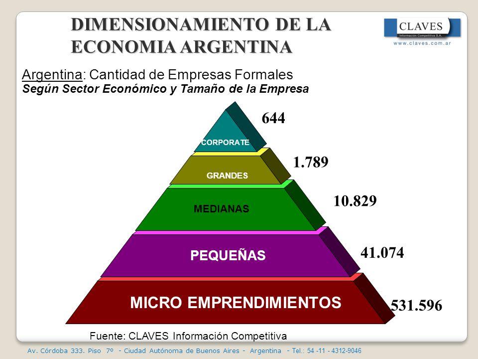 DIMENSIONAMIENTO DE LA ECONOMIA ARGENTINA