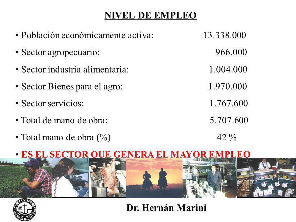 NIVEL DE EMPLEO Dr. Hernán Marini